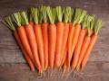 praca-przy-produkcji-marchewek-od-zaraz-venlo-small-0