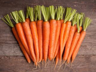 Praca przy produkcji marchewek OD ZARAZ !!! Venlo