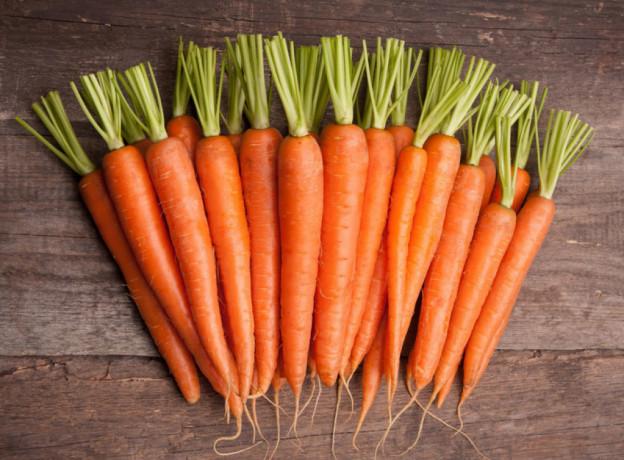 praca-przy-produkcji-marchewek-od-zaraz-venlo-big-0