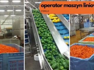 Operator maszyn produkcyjnych/ praca w Eindhoven