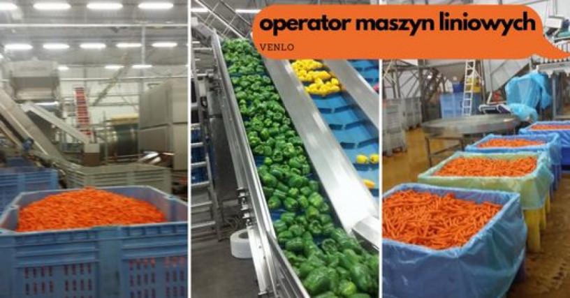 operator-maszyn-produkcyjnych-praca-w-eindhoven-big-0