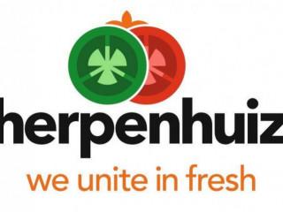 Praca produkcyjna w firmie Scherpenshuizen / Eindhoven