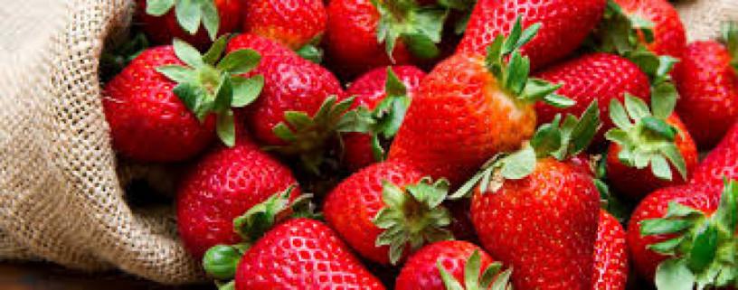 praca-przy-produkcji-salatek-owocowychkrojeniu-truskawek-od-zaraz-big-0
