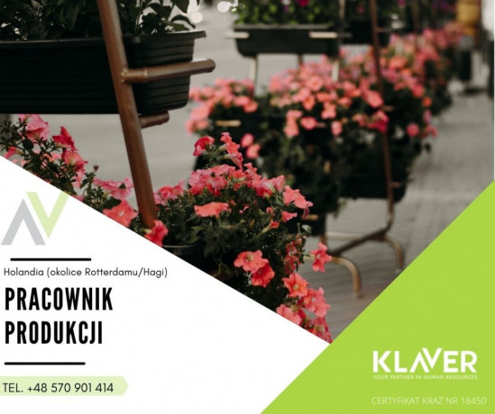pracownik-sektora-ogrodniczego-sadzenie-ciecie-i-pielegnacja-kwiatow-big-0