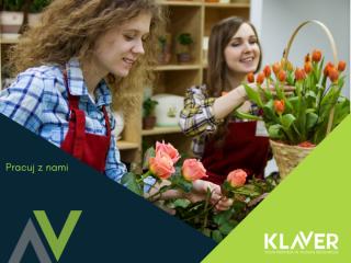 Kwiaty cięte doniczkowe, sadzonki- praca w Holandii od zaraz