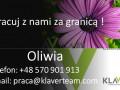 praca-przy-kwiatach-w-holandii-small-0