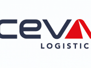 Praca w magazynie CEVA LOGISTICS/ Eindhoven