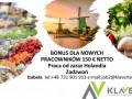 praca-od-zaraz-holandia-bonus-dla-nowych-pracownikowsortowanie-owocow-small-0