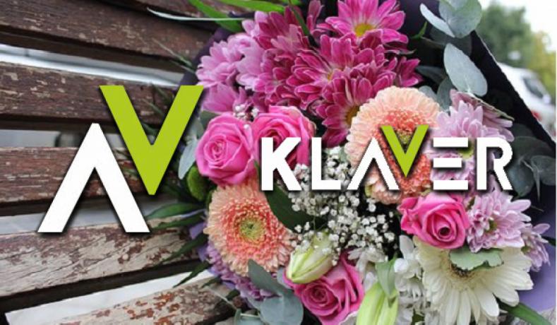 praca-od-zaraz-przy-kwiatach-w-holandii-sadzonki-kwiaty-doniczkowe-i-ciete-big-0