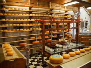 Pakowanie i obróbka sera Holandia – Barneveld mile widziane pary