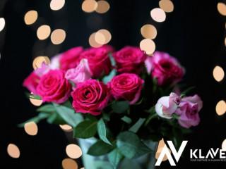 Praca od zaraz przy kwiatach w Holandii- sadzonki, bukiety